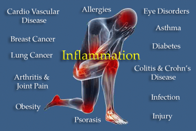 Causes-of-Inflammation.png