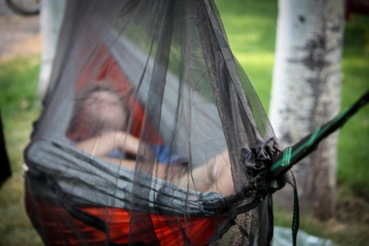 madera-outdoor-bug-net-freedom-bug-net-best-camping-hammocks-eno-hammock-top-10-best-hammocks-companies-that-plant-trees-hammocksneedtr